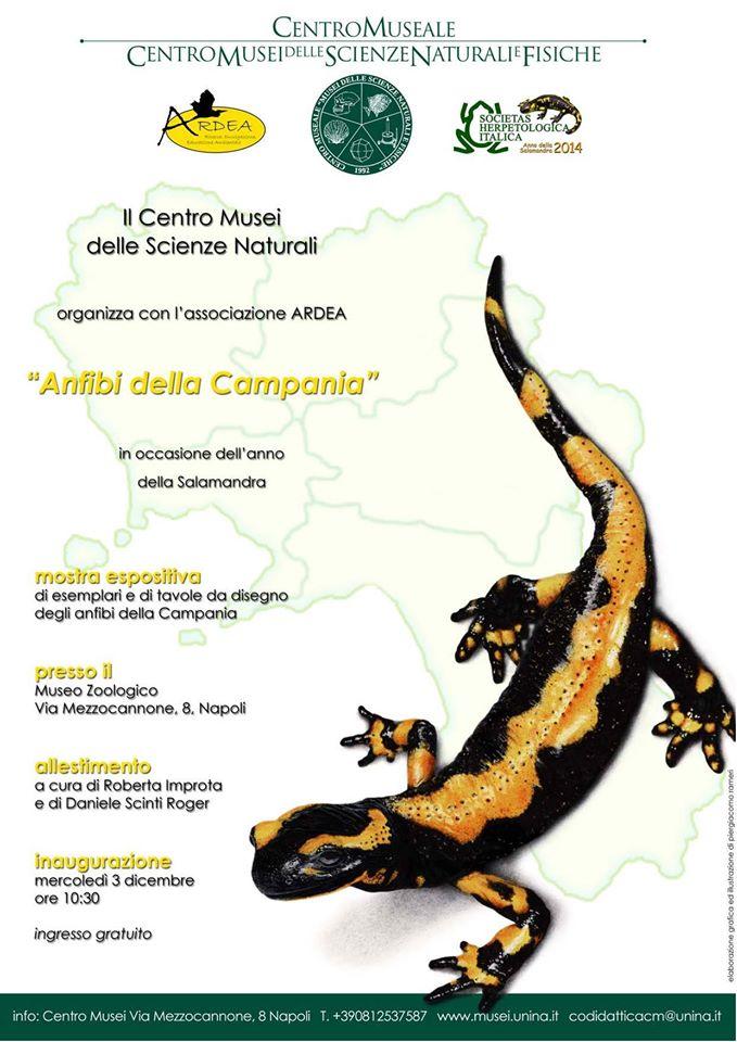 Mostra Anfibi della Campania