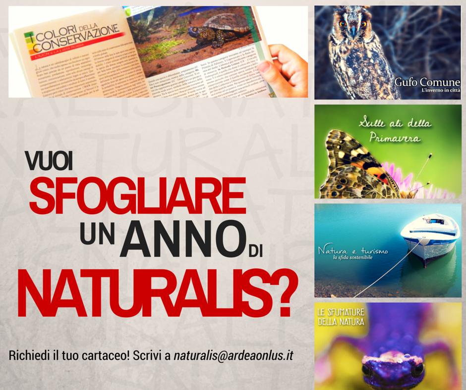 NATURALIS (2)